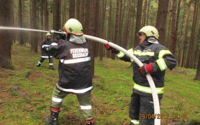 Großangelegte Waldbrandübung in Altheim