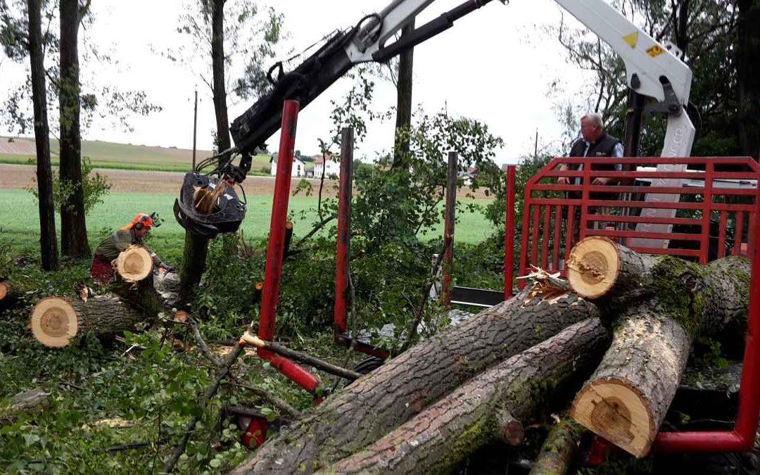 Sturmschäden in Altheim